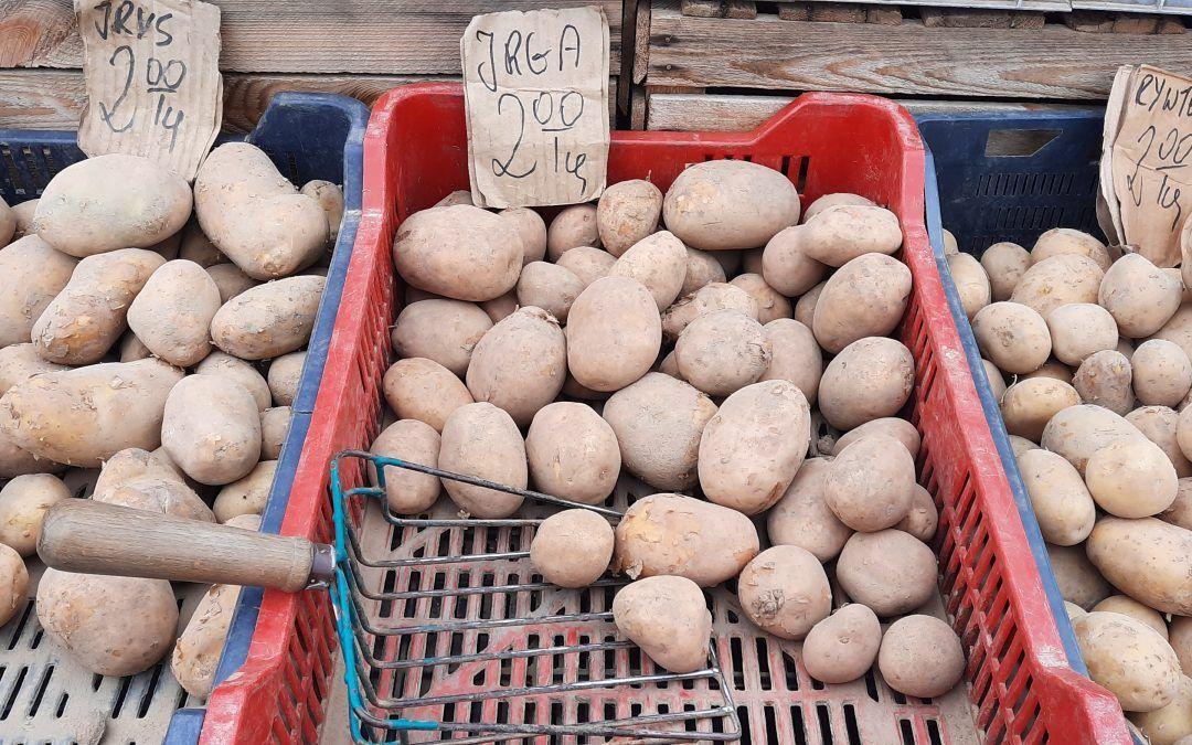 Ceny ziemniaków